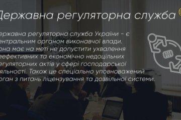 Державна регуляторна служба: між державою та бізнесом