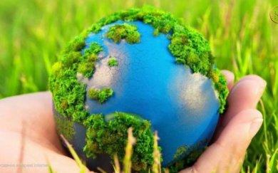 Як працює Державна екологічна інспекція