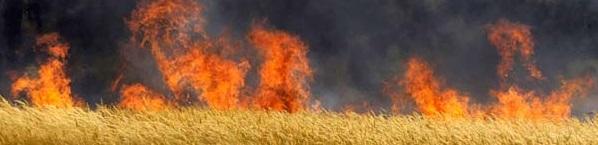 21 червня, 10-00. Брифінг щодо організації протипожежного захисту