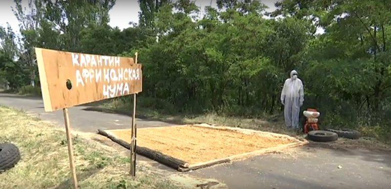 У Бахмутському районі зафіксовано спалах африканської чуми