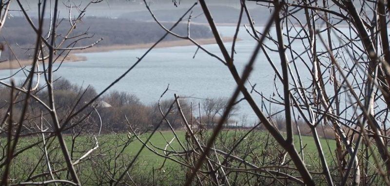 На території ландшафтного парку «Клебан-Бик» виявлено випадки захворювання на «Африканську чуму свиней»