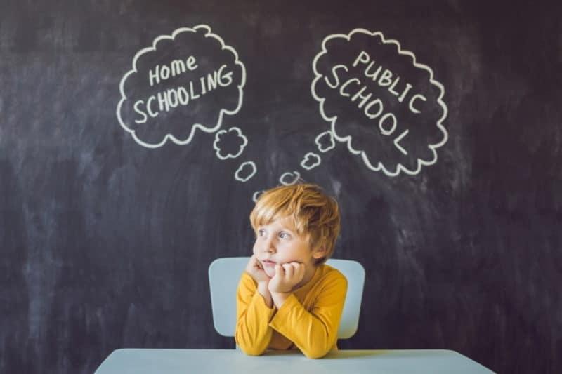 Як обрати індивідуальну форму навчання дитини