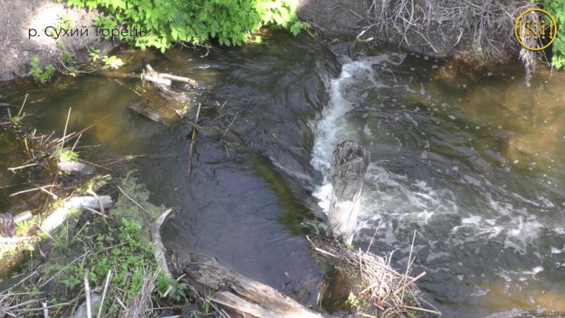 Чи вистачить влітку води в річках