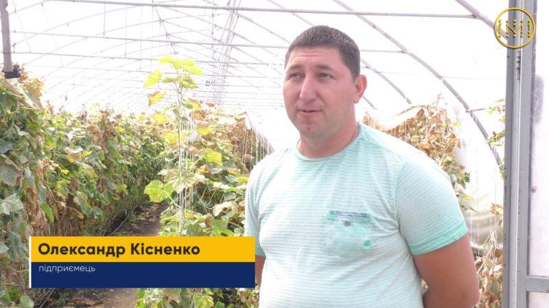 Український донецький куркуль з Олександрівської ОТГ