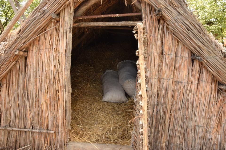 Старовинна будівля в селі Маяки Слов'янського району - Фото №15