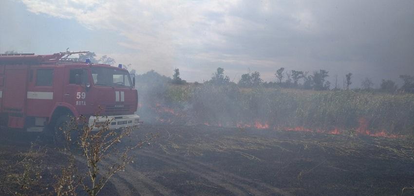 На Донеччині та Луганщині з початку року сталося 1100 пожеж в екосистемах